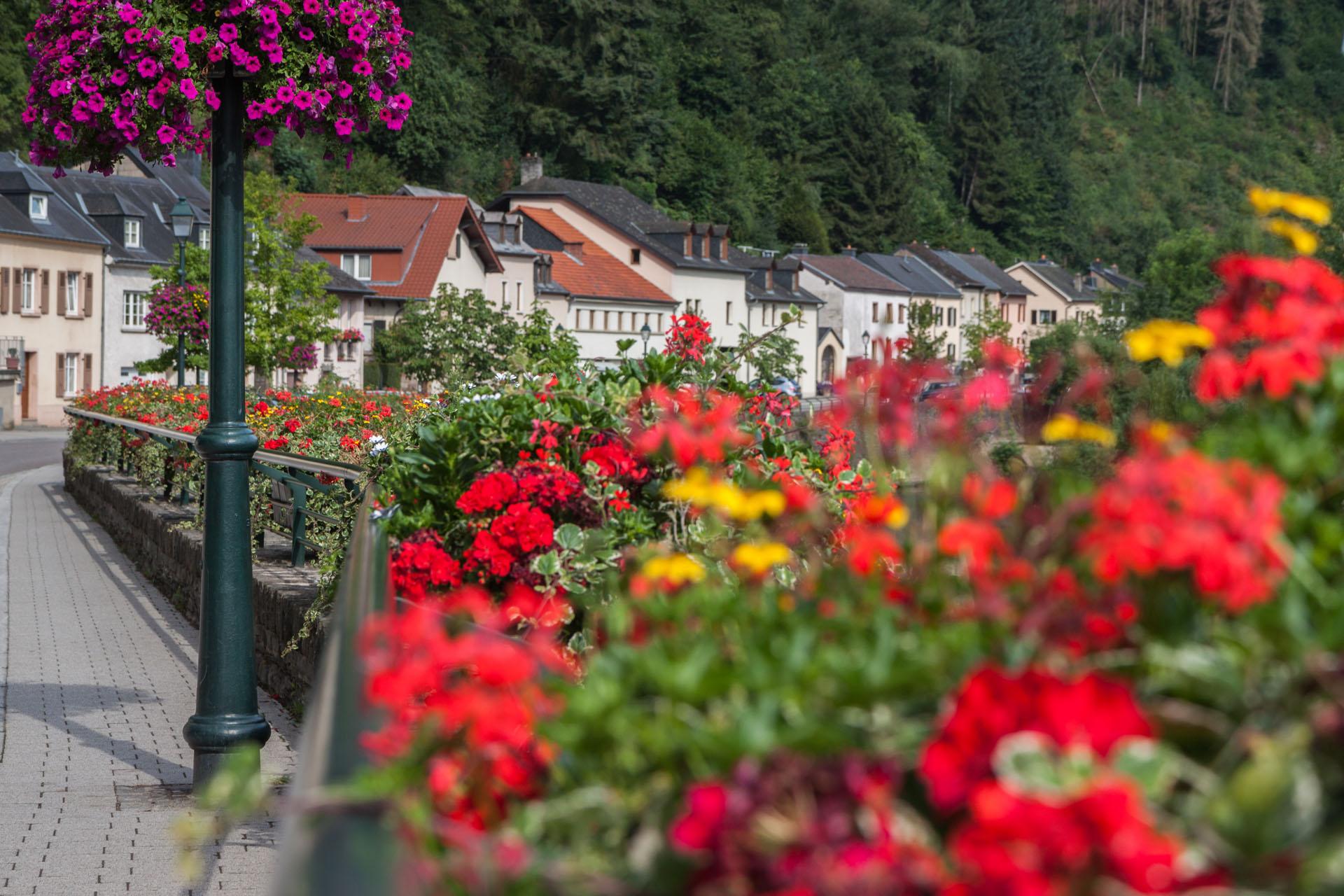 Mullerthal Trail - Hotel Brimer